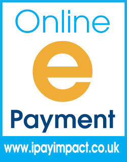 online e payment